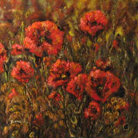 poppies5 by ENERGIA1