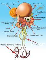 Anatomy Of Flying Polyp by JohnFarallo