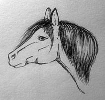 Quick horse sketch by RiikkaK