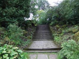 Jungle Steps by fuguestock