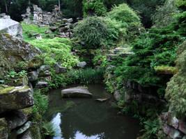 Forgotten Pond 01 by fuguestock
