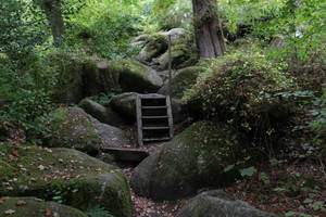 Fairy Forest 25 - Rocky Path by fuguestock