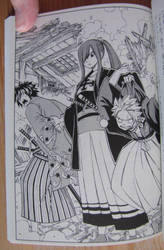 erza natsu gray fairy tail novel by bamis
