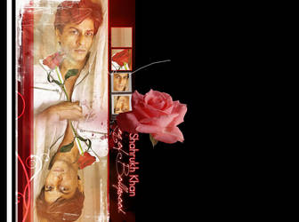 Srk Rose by Aries85