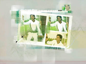 SRK BB by Aries85