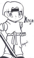 Ninja by Megumiinelite