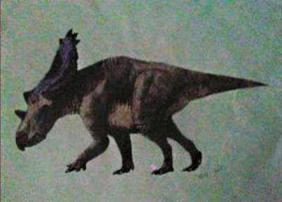 Utahceratops Gettyi by pacman4202