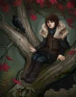 Bran the Broken by Krikin