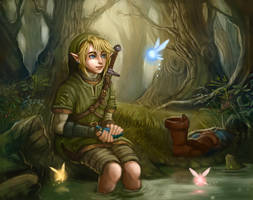 Legend of Zelda by Krikin