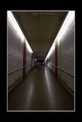another Path by feebonacci