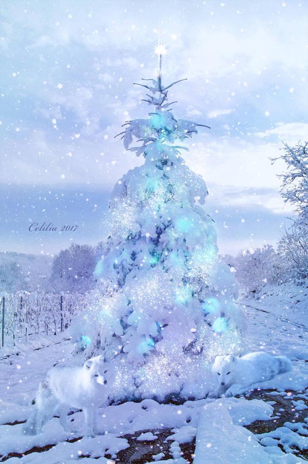 Winter Wonderland by CeliliaWonder