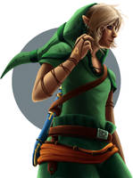 The Legend Of Zelda: Link by Zita52