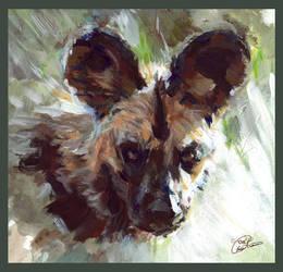 African Wild Dog by ChayaA