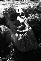 Troll by handtoeye