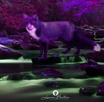 Magic Fox by LuhaBiha