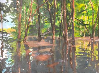 Flooded Grove by ZeldaGeek401