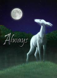 Always by RachelHWhite