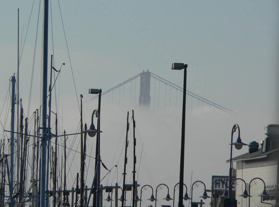 first sight of Golden Gate by RachelHWhite