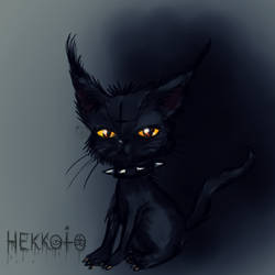 Kitty by Hekkoto