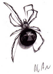 spider by alanbarbosa