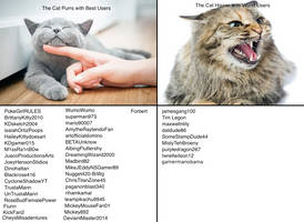 Cat Meme with Users by PokeGirlRULES