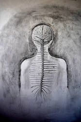 Spinal Cord... by WelcomeToOurDarkness