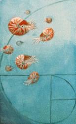Fibonacci Friends by MidgarZolom