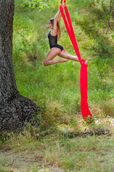 Red Silk Areal Acrobat by redsilkphotos