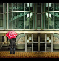 Wet afternoon - 2 by matmoon