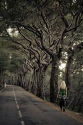 Sur la route - 2 by matmoon