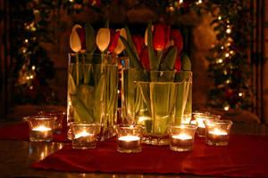 Christmas Flowers by DreAminginDigITal