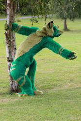 Dancer in green by Dragon-Furry