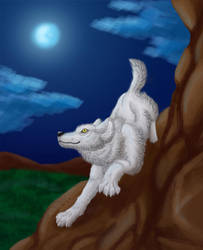 Moonlight by wingwolf-WinGD