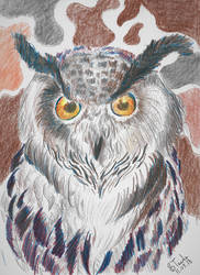 Eagle Owl colour pencil by SulaimanDoodle