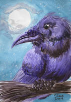 September watercolor raven by SulaimanDoodle