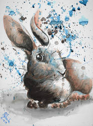 January rabbit watercolor by SulaimanDoodle