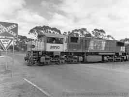 Medium Format Train Photography by ShannonIWalters