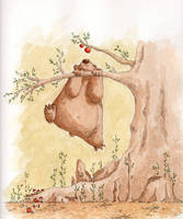 Bear wants apple by Tisseur-de-reves