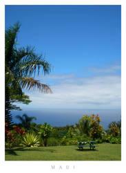 Maui by discojing