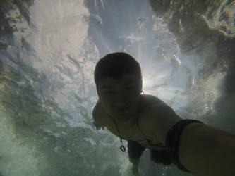 Diving Down by Callsign-Shutter