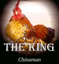 The Chinaman. by Talk3talk4