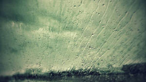 November Rain by ShaunAnarchy