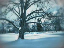 More Snow 4 by ShaunAnarchy