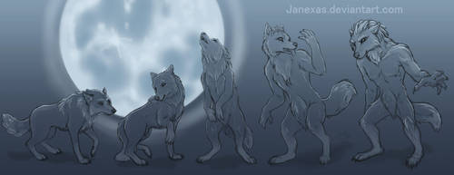 Reverse Werewolf .: Commission :. by Janexas