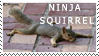 ninja squirrel stamp by war-armor