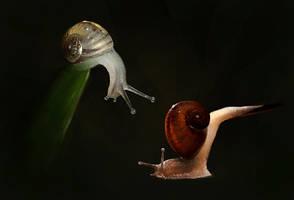 Little Slimers by LeeshaHannigan