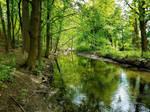 Wooster Waterway by GUDRUN355