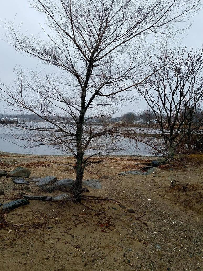 February Beach by GUDRUN355