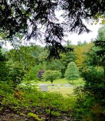 Hillside View by GUDRUN355