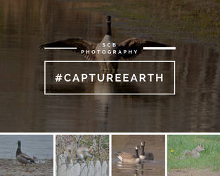 Capture Earth by FTSArts